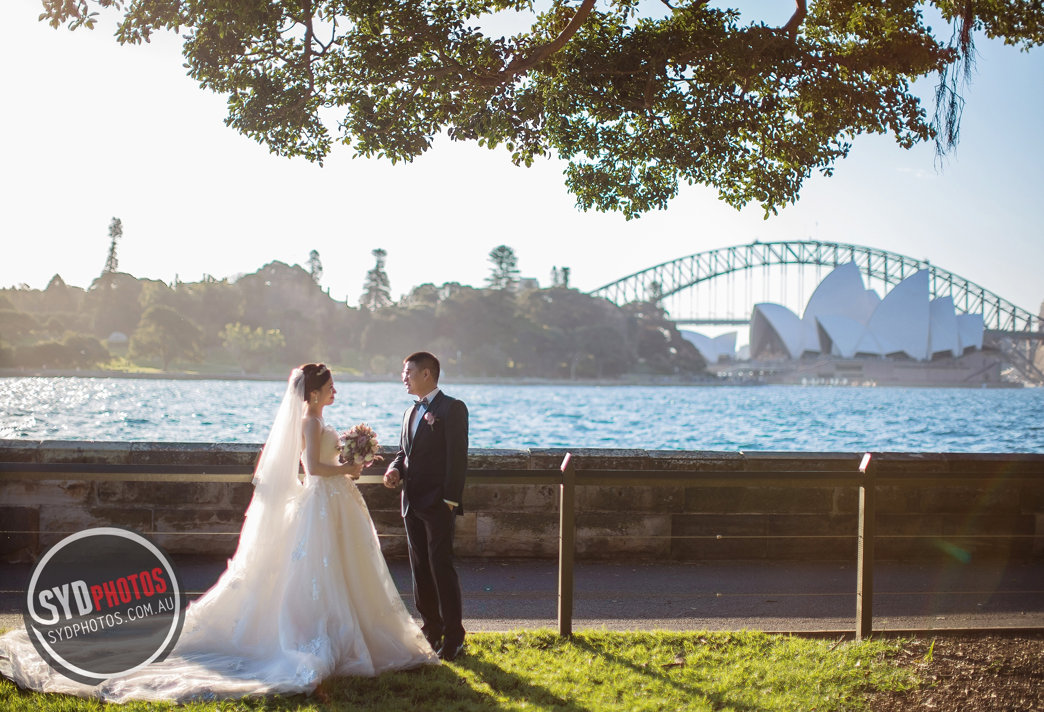 id-80174-20170903-654.jpg, By Photographer Sydphotos.wedding, Created on 11 Feb 2018, SYDPHOTOS Photography all rights reserved.